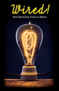 image of carbon filament bulb