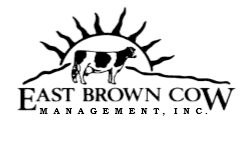 East Brown Cow